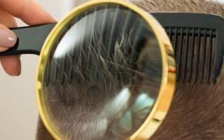 5 лучших профессиональных машинок для стрижки волос — Рейтинг 2020