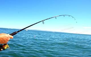 20 лучших рыболовные лесок для рыбалки — Рейтинг 2020