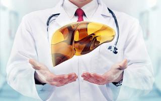 7 лучших препаратов для печени — Рейтинг 2020 (топ 7)