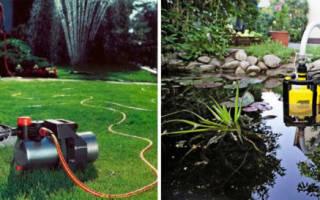 15 лучших насосов для полива огорода — Рейтинг 2020