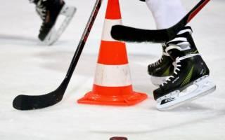 7 лучших хоккейных коньков — Рейтинг 2020