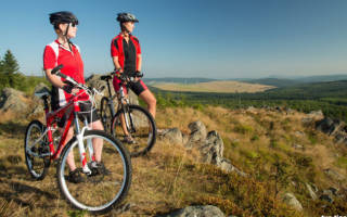 13 лучших производителей горных велосипедов — Рейтинг 2020