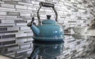 Как выбрать чайник для плиты.ru