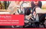10 лучших колясок Capella — Рейтинг 2020