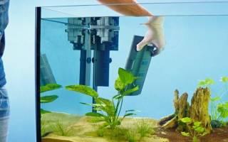 6 лучших фильтров для аквариумов — Рейтинг 2020 (топ 6)