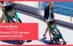 18 лучших колясок-тростей по мнению покупателей — Рейтинг 2020