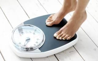 Как выбрать напольные весы: контролируем вес.ru