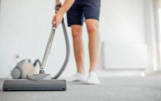 8 лучших пылесосов с мешком для пыли по отзывам покупателей — Рейтинг 2020